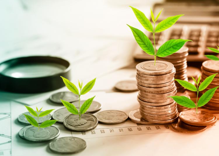 Bonos verdes, Inversiones verdes, Inversión sostenible