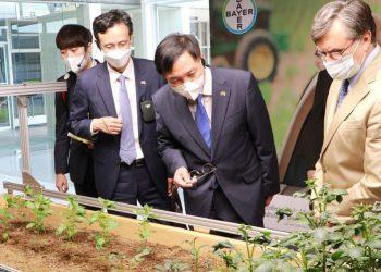 Corea del Sur e IICA