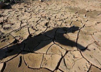 Erosión del suelo, lucha climática, cambio climático