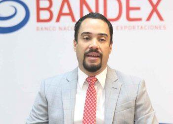 Juan Mustafá, gerente general de Bandex.