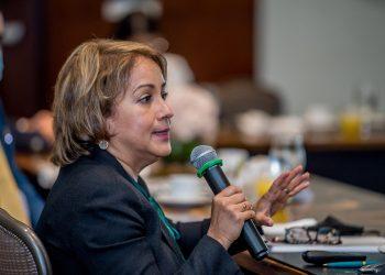 La presidenta ejecutiva de Adafp, Kirsis Jáquez, presentó las propuestas del gremio.   Fuente externa.