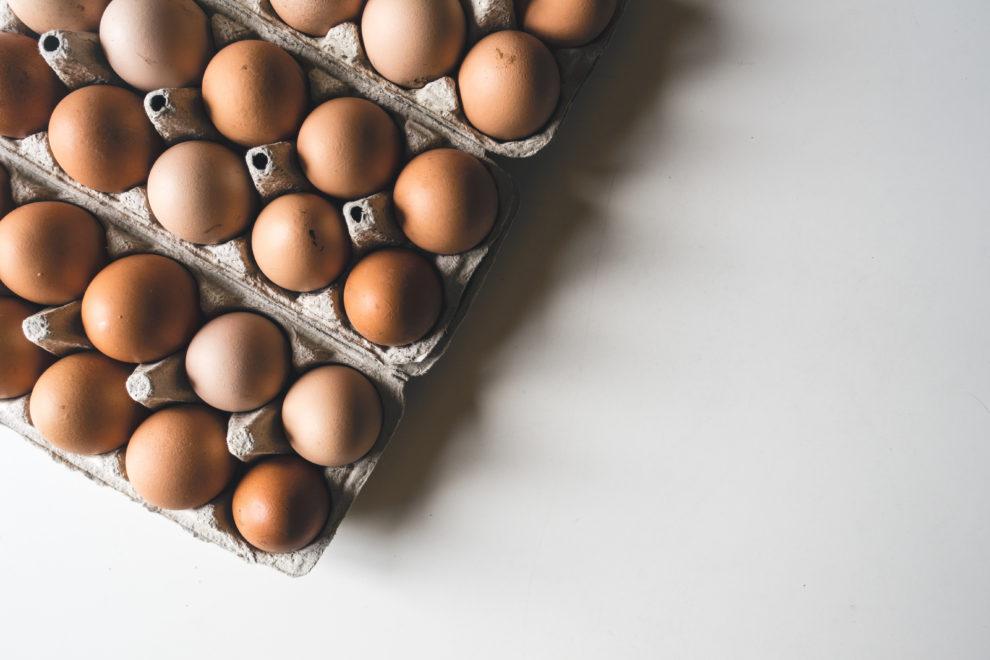 procompetencia inicio investigacion mercado huevos