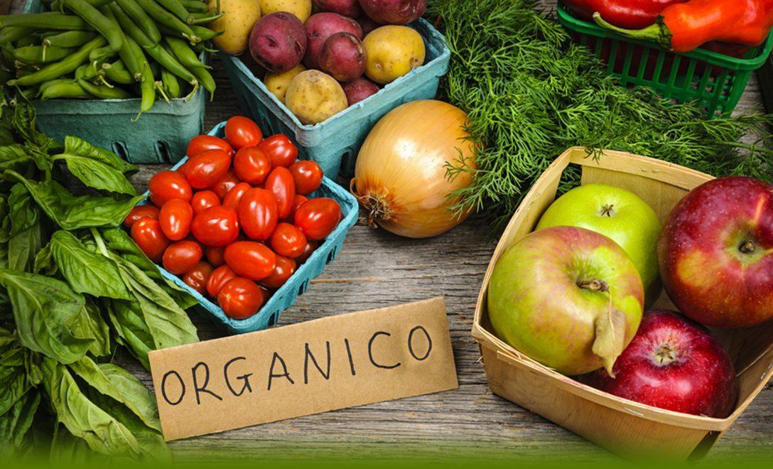productos orgánicos fondo nordom 603 alimento organico