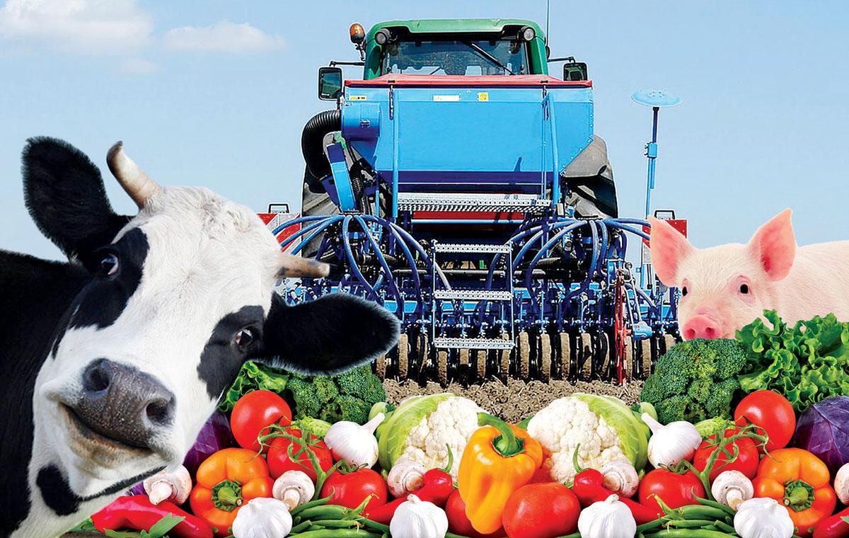 cooperativas agropecuarias