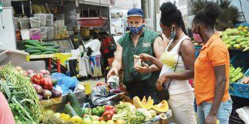 Las empresas informales son micro y pequeñas, siendo el ámbito de mayor cantidad de empleos que no cotizan a la seguridad social.