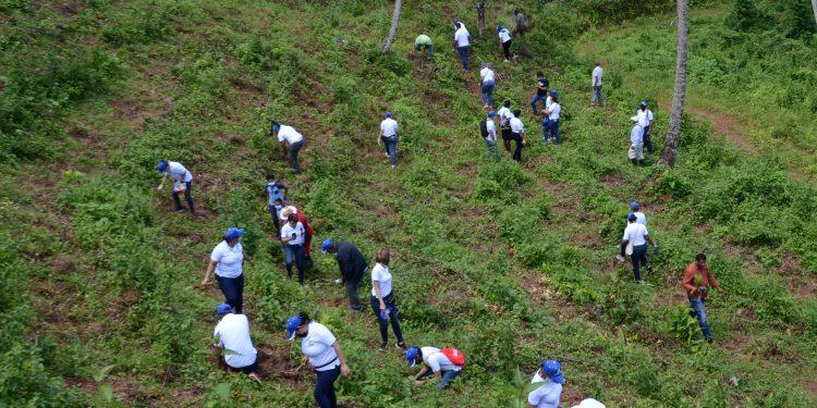 Personal del CNSS durnate la jornada de reforestación.