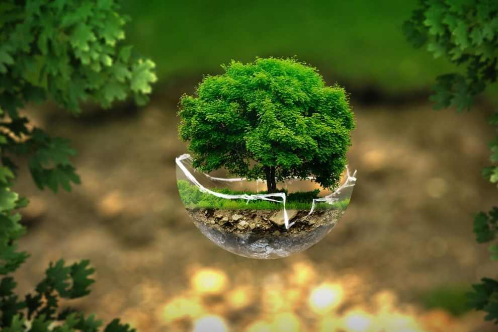 planeta medioambiente naturaleza