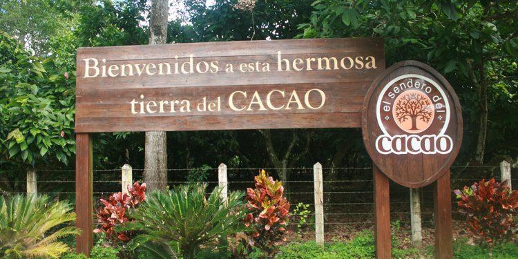 El Sendero del cacao es un destino idóneo para los aficionados del chocolate orgánico.